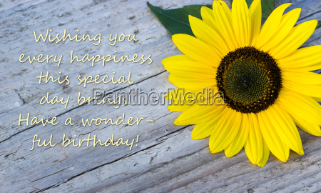 birthday card english text lettering congratulations
