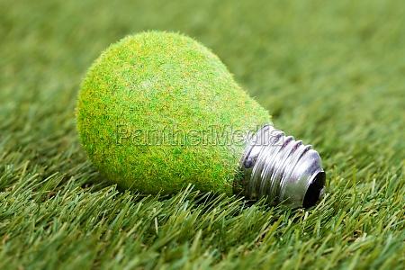 energiesparlampe auf gruenem gras