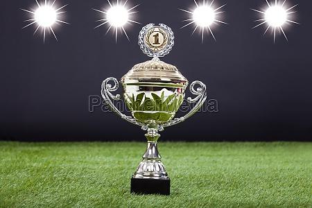 trophy cup auf gruen pitch liegen