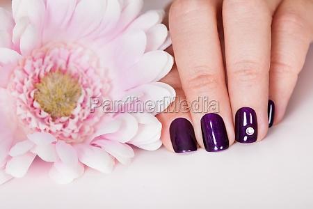 beautiful manicured nails
