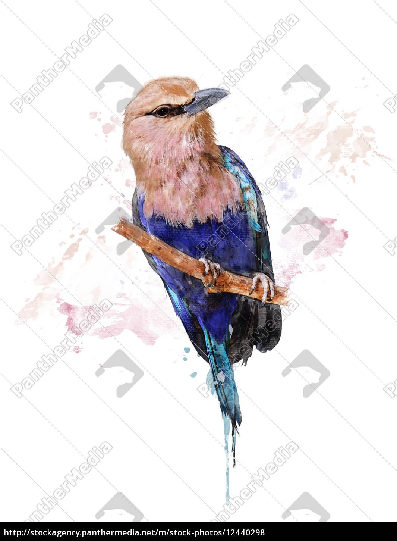 aquarell-bild, der, blauen, aufgeblähten, rolle - 12440298