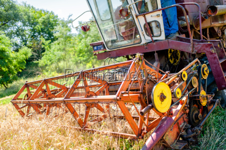 combine corn and wheat harvester agriculture