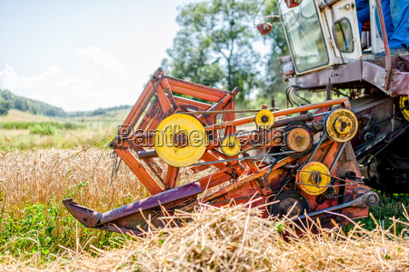agricultural activities with combine harvesting machine