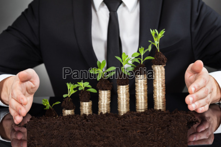 businessmans hands protecting coins in saplings