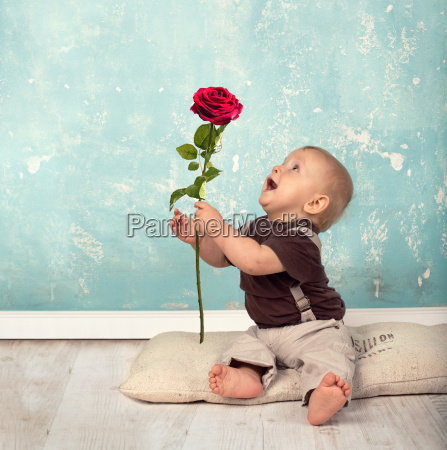 eine rose schenken