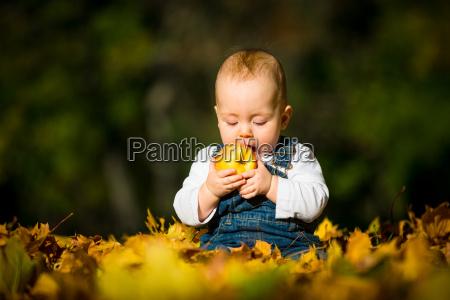 gesundes essen baby und apfel
