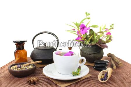 chinesische naturmedizin mit einer tasse tee