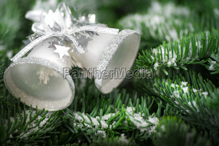 christmas bells on pine branches