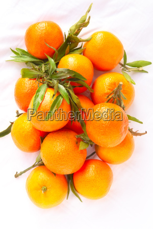 freshly picked clementines with leaves