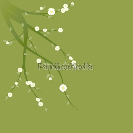flowering green branches