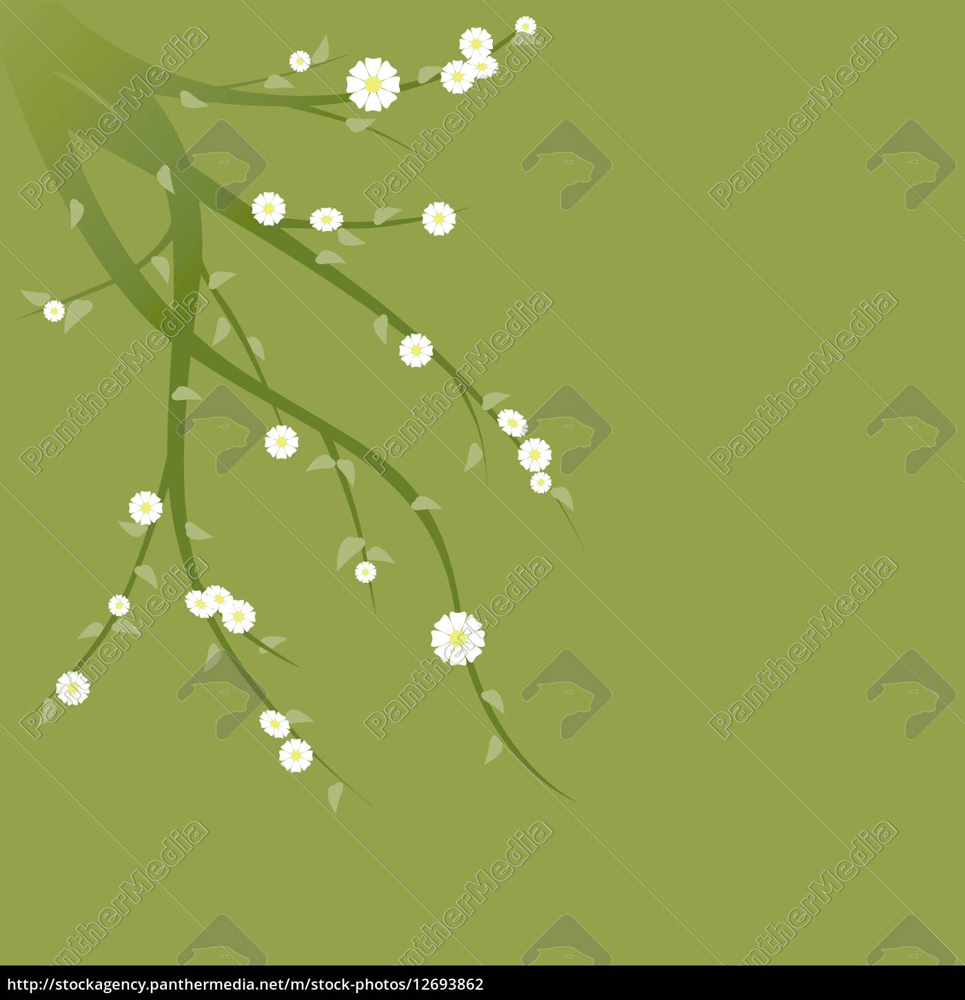 flowering, green, branches - 12693862