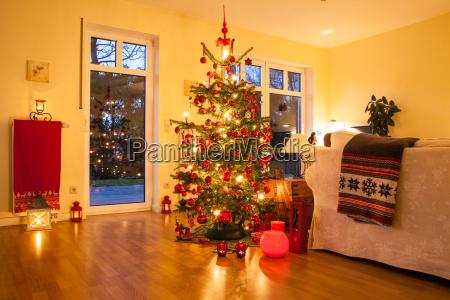 beleuchtete weihnachtsbaum
