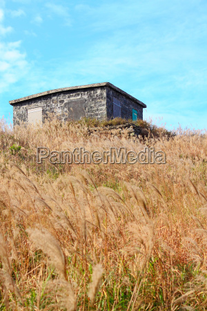 old stone house with grass on