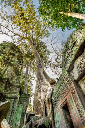 fahrt reisen religion tempel kultur beruehmt