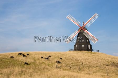 mulino a vento energia eolica storica