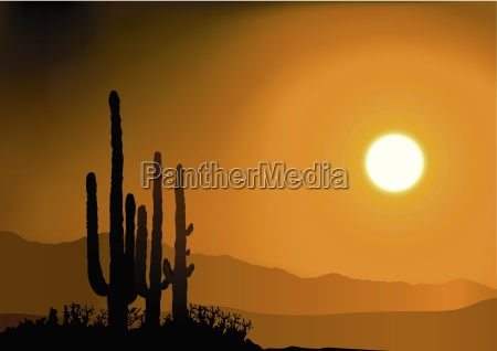 sunset and cactus silhouettes colored
