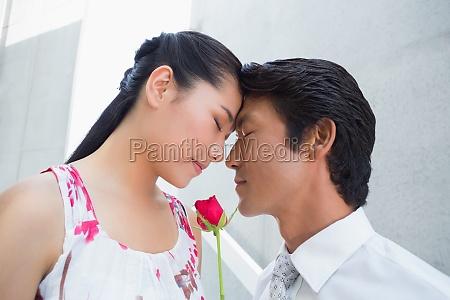 man bietet eine rote rose zu