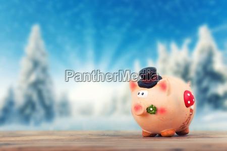 gluecksschwein im winter