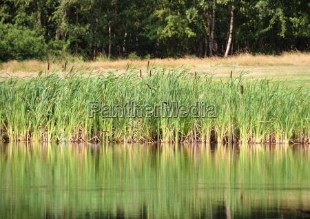 reflexion outdoor freiluft freiluftaktivitaet im freien