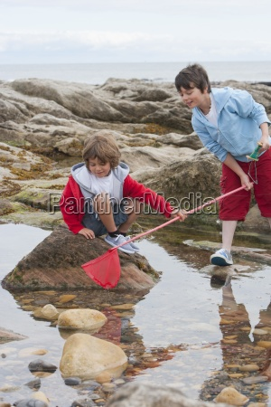 two boys exploring rockpools together