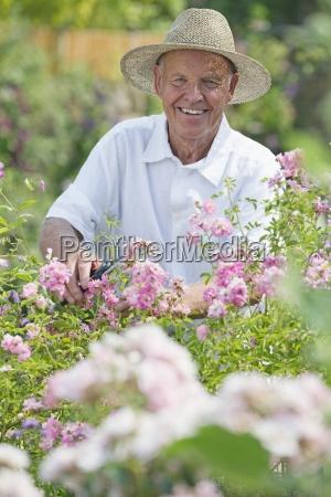 senior man arbeitet in wunderschoener cottage
