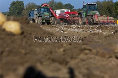 traktoren ernte kartoffeln in sonnigen laendlichen