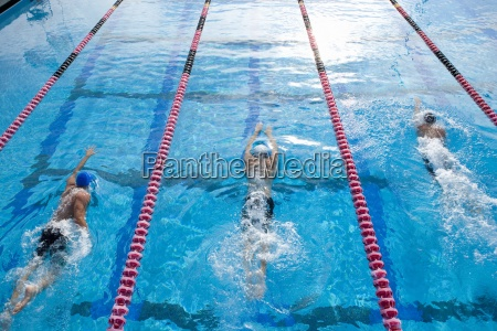 maennliche schwimmer ausbildung in schwimmbad erhoehte