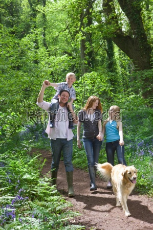 family walking in forest with bluebell