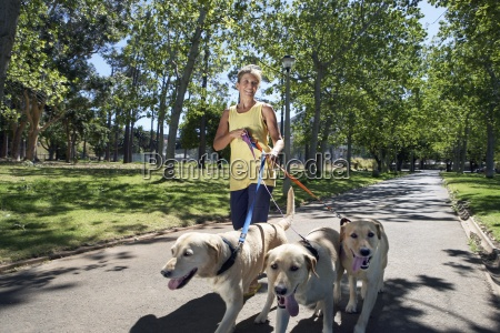woman taking three dogs for walk