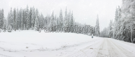 weihnachtshintergrund mit verschneiter strasse im wald