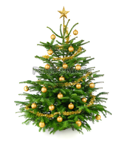 schoener gold geschmueckter weihnachtsbaum