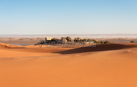 oasis in the sahara desert morocco