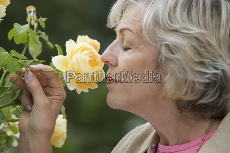aeltere frau riecht gelbe blume die