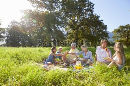 multi generation family having picnic in