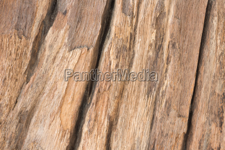 close up of wood textured