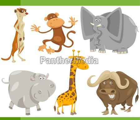 safaritiere cartoon satz illustration