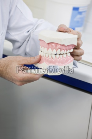 selective focus human teeth imitation large