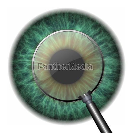 pupille mit auge