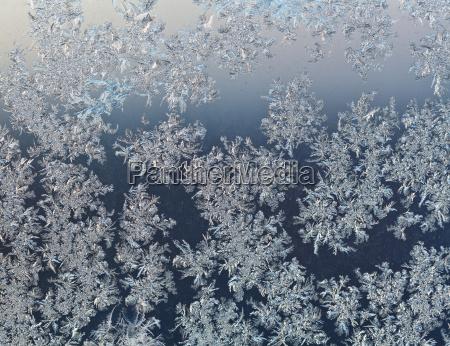 schneeflocken auf fensterscheibe im fruehen winter
