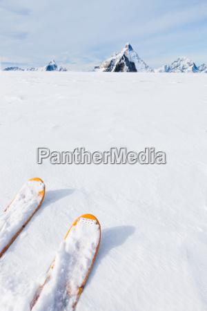 ski tips snow field and mountain