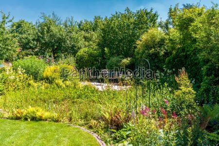 natural garden in summer