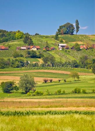 paisaje de la campinya agricola vista