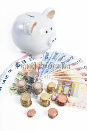 much money with piggy bank