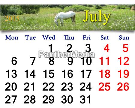 pferd ross feld sommer sommerlich tags