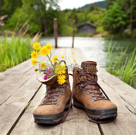 caminata flor flores planta zapatos puente