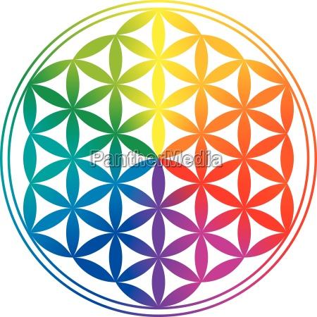 blume des lebens regenbogen farbverlaeufe