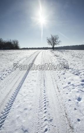snow scenery