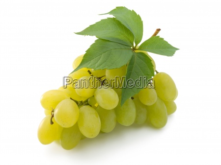 bunch of fresh grapes with leaf