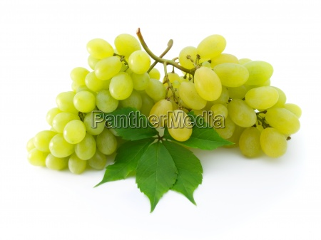 two bunch of fresh grapes with