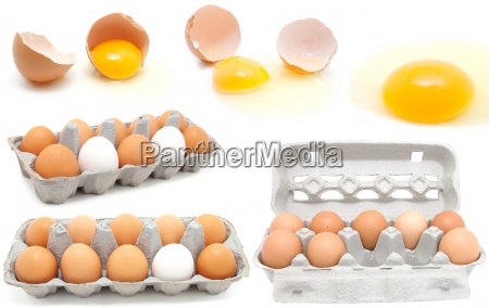 set of eggs on a white